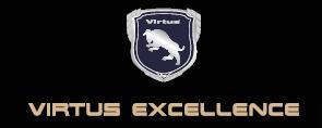 Virtus Gastro-Produkte